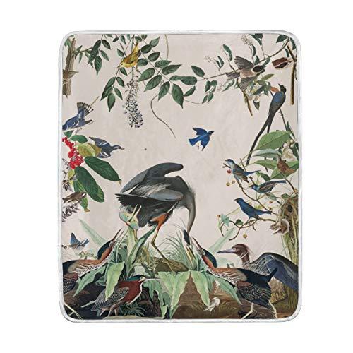 KEEPDIY Audubon Herons Song Birds Blanket-Warm,Lightweight,Soft,Pet-Friendly,Throw for Home Bed,Sofa &Dorm 60 x 50 Inch
