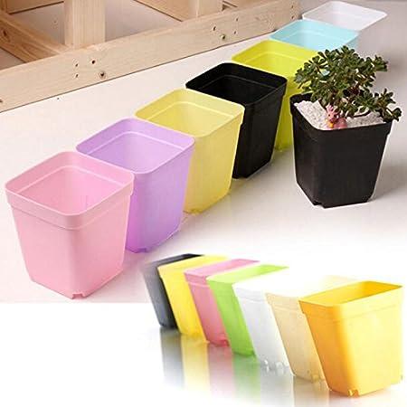Chytaii. Macetas Plastico Macetas Bonsai Plastico Macetas Decorativas para Patio Jardín La Decoración del Hogar: Amazon.es: Hogar