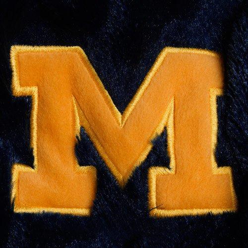 FOCO Michigan 2012 Mohawk Long Thematic Hat