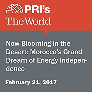 Now Blooming in the Desert: Morocco's Grand Dream of Energy Independence