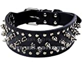 "OrangeTag 17""-20"" Black Faux Leather Spiked Studded Dog Collar 2"" Wide, 31 Sp..."