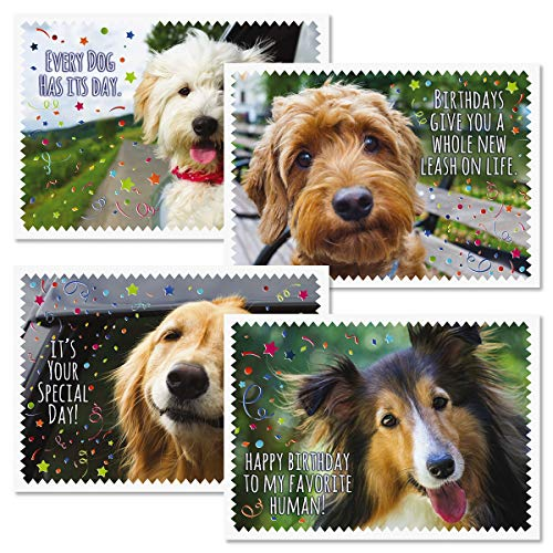 Furry Pals Kids Birthday Greeting Cards - Set of 12 (4 Designs), Large 5