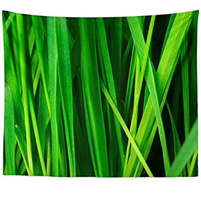 Westlake Art - Grass Plant - Wall Hanging Tapestry - Picture Photography Artwork Home Decor Living Room - 68x80 Inch (100C8)