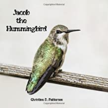 Jacob the Hummingbird