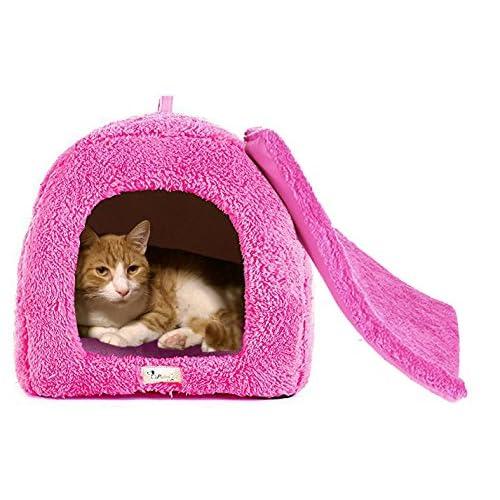 Igloo Dog Bed Amazon