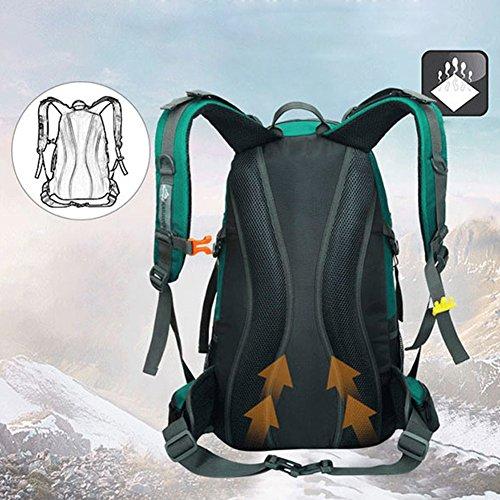 45L+5L Impermeable Mochila de Senderismo con Cubierta Lluvia, Paquete del Alpinismo Escalada Marcha Trekking Camping Deporte Al Aire Libre Unisex (púrpura) azul