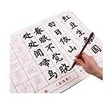 Brush Copypaper, Cuisive Writing Chinese Art Paper Tang Poetry, Liu Gongquan Sty