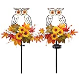 Collections Etc Solar Lighted Owls and Fall Garden Stakes Set, Outdoor Décor for Yard, Lawn, Garden, 2 Pc