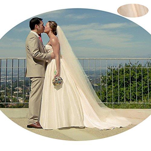 Anmor Women's Elegant Lace Appliques Wedding Veil Long Veil for Bridal AR11057