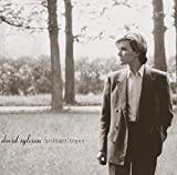 Brilliant Trees By David Sylvian (2006-05-29)