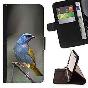 Jordan Colourful Shop - Blue Tropical Bird Grey Feather Branch For Apple Iphone 6 PLUS 5.5 - Leather Case Absorci???¡¯???€????€???????