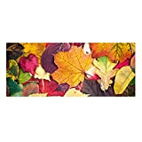3D Visual Stair Treads Carpet Non Slip Step Mats,Rubber Backing,For Home Decorations Set of 13, 9''X23.5'' Leaves Series 16