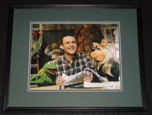 Jason Segel Signed Framed 11x14 Photo PSA/DNA Muppets w/Kermit & Ms Piggy ()