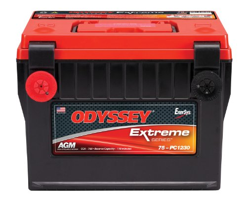 - Odyssey 75-PC1230 Automotive Light Truck Battery