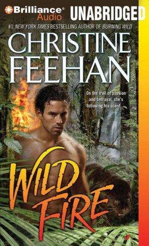 Wild Fire (Leopard Series) by Brilliance Audio