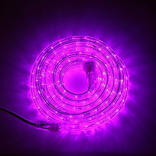 LampLust 24 Ft. Plugin Rope Lights, 287 Purple LEDs, Connectable, Dimmable, Waterproof, Indoor/Outdoor Use, Ideal for Backyards, Weddings and Christmas - Rope Kitchen