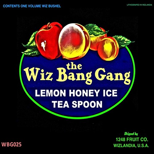 Lemon Honey Ice Tea Spoon