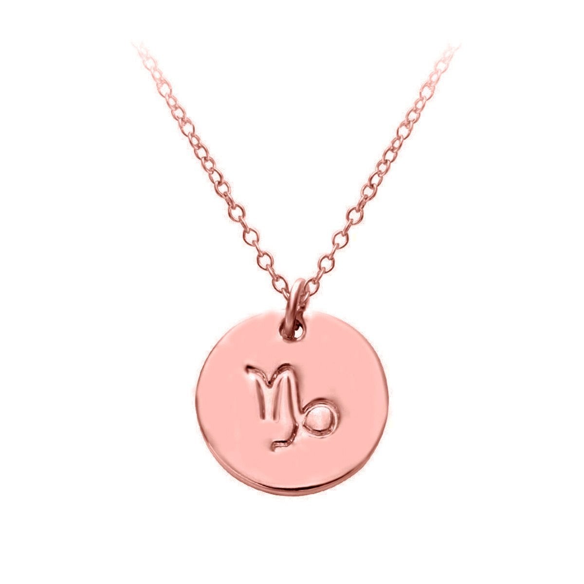 HACOOL 18k Rose Gold Plated Women Zodiac Sign Tag Constellation Horoscope Astrology Disc Charm Necklace