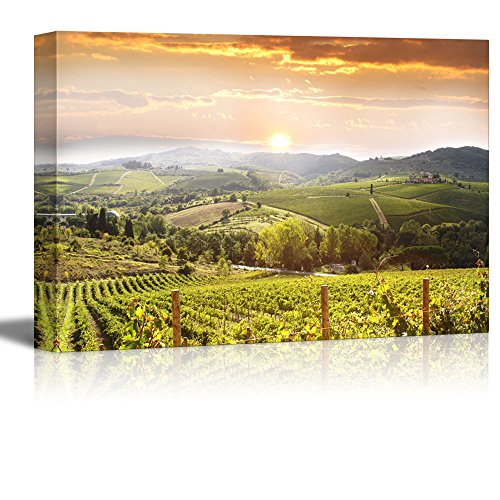 Tuscany Italy Landscape - wall26 Canvas Prints Wall Art - Chianti Vineyard Landscape in Tuscany, Italy | Modern Wall Decor/Home Decoration Stretched Gallery Canvas Wrap Giclee Print. Ready to Hang - 24