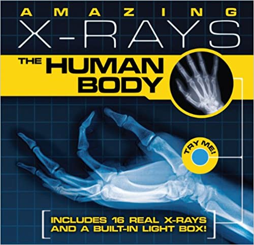 Human Body Stuff for Kids from In Our Pond