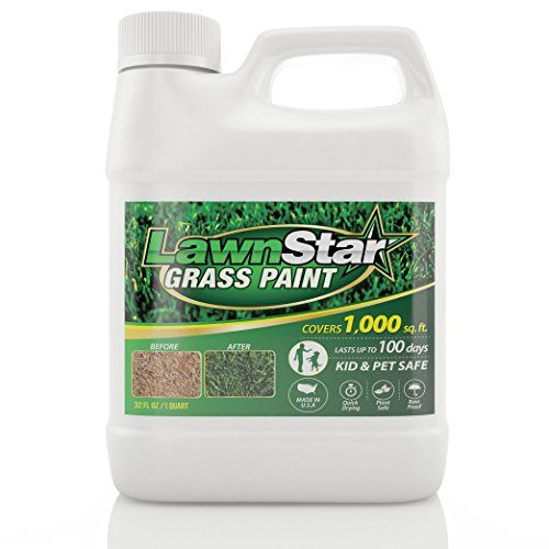 Lawn Star Grass Paint, 32 fl. oz. - Makes Grass Green Again