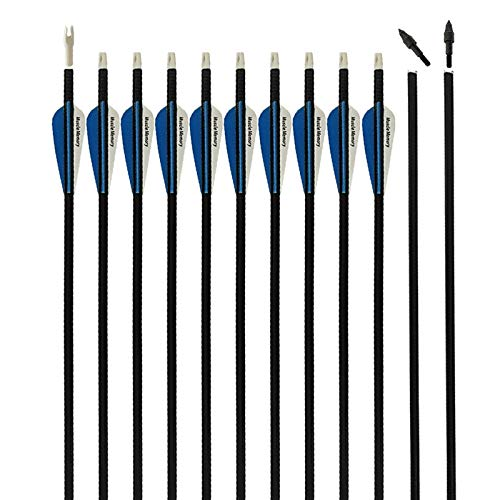 REEGOX Archery Arrows 30 inch Carbon Practice Hunting and Target Arrows for Compound Recurve or Traditional Bow with Removable Tips(Pack of 6/12)