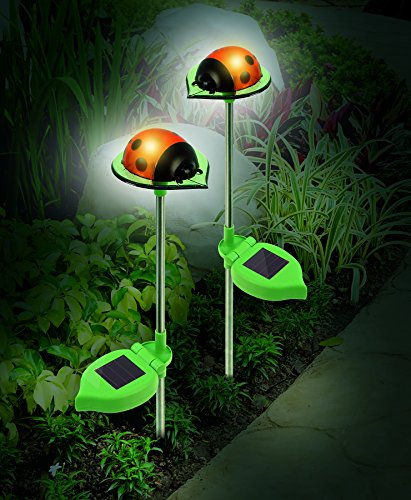 Ladybug Solar Lights, LED's Shine Through Translucent Material For a Soft Glow, Set of 2 Solar Ladybug Lights