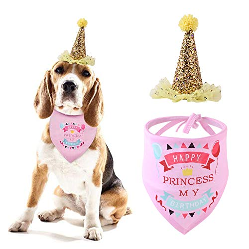 Snagle Paw Dog Birthday Bandana with Cute Doggie Birthday Party Hat,Great Dog Birthday Outfit and Decoration Set,Perfect…