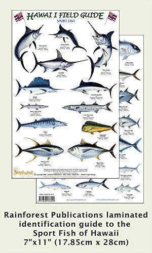 Hawaii Sport Fish Identification Guide (Laminated Single Sheet Field Guide) (Hawaii Field Guides) (Hawaii Reef Fish)