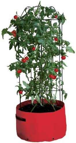 Maceteros de escalada para tomates - oferta especial 2 ...