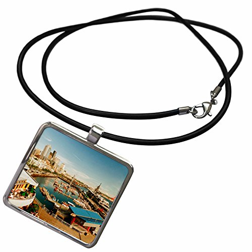 3dRose Danita Delimont - Seattle - USA, Washington, Seattle, Bell Street Pier - US48 RDU0473 - Richard Duval - Necklace With Rectangle Pendant (ncl_148496_1)