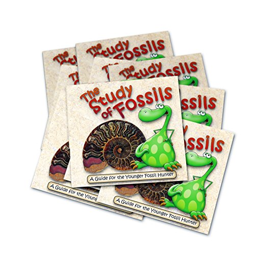 The Study of Fossils Booklets x 10 - Party Bag Filler