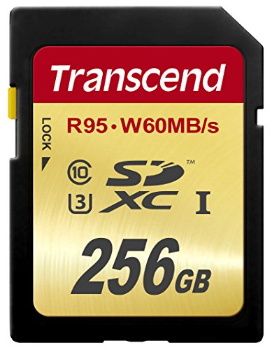 Transcend 256 GB High Speed 10 UHS-3 Flash Memory Card 95/60 MB/s (TS256GSDU3) by Transcend