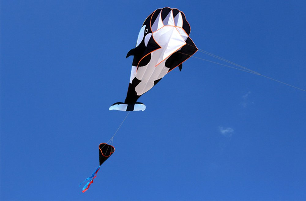 HENGDA KITE-3D Kite Huge Frameless Soft Parafoil Giant Black Dolphin Breeze Kite by HENGDA KITE (Image #2)
