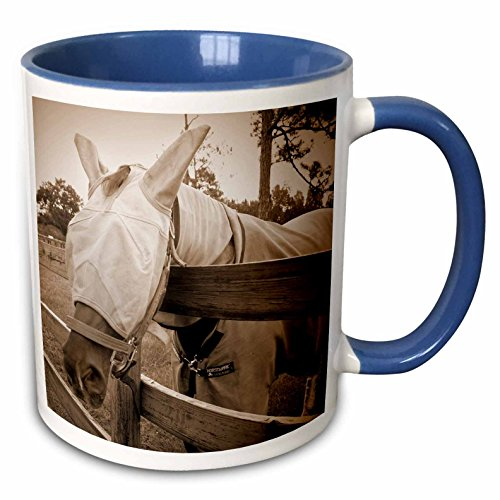 3dRose Susans Zoo Crew Animals Horse - horse fly mask over fence sepia - 15oz Two-Tone Blue Mug (mug_162183_11)