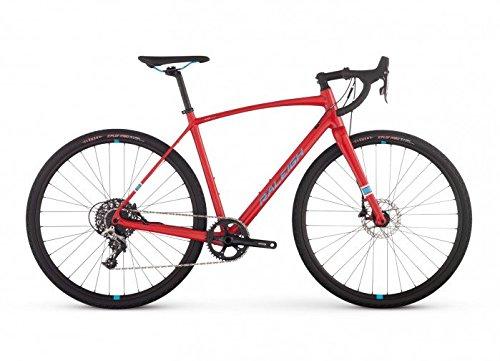 Raleigh-Bikes-Roker-Comp-All-Road-Bike