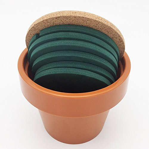 Cactus Coasters Set of 6 with Pot Shaped Holder, Prevents Table Damage and Spill, Gift ideal for Home and Office by Miragee (Image #3)