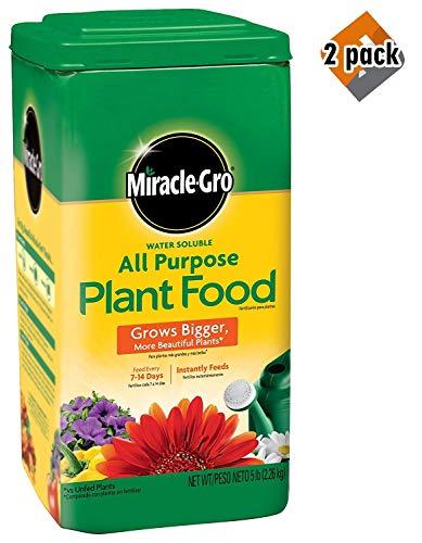 Top Aquatic Plant Food