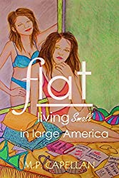 Flat: Living Small in Large America