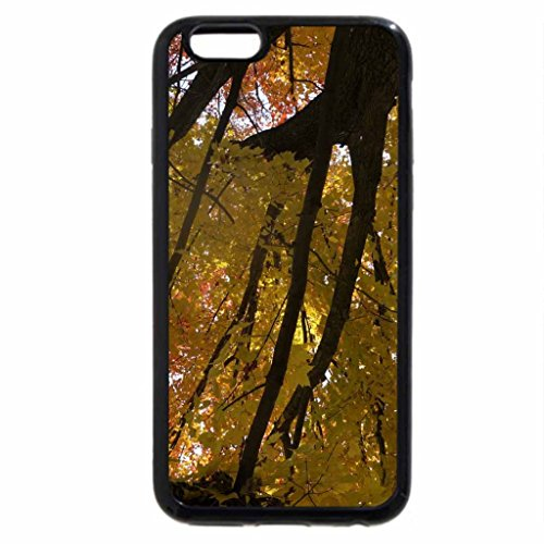 iPhone 6S / iPhone 6 Case (Black) Glorious Fall
