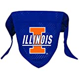 NCAA Illinois Illini Pet Bandana, Team Color, Small