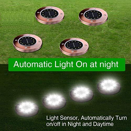 Elite Outdoor Security Sensor Light