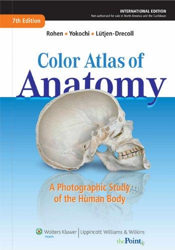 The Human Body Book Pdf