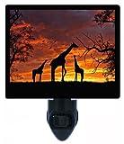 Night Light - Giraffes at Sunset - Africa - Giraffe LED NIGHT LIGHT