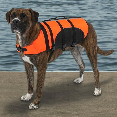 Guardian Gear Aquatic Pet Preserver Lrg Orange
