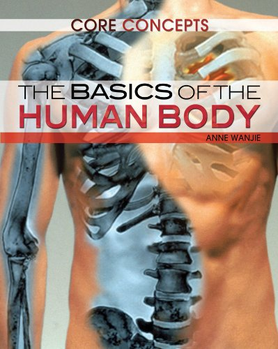 The Basics of the Human Body (Core Concepts)