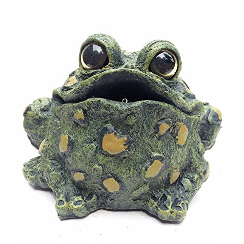 Toad Hollow Croaking Toad Statue from Toad Hollow
