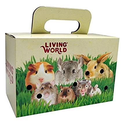 8e79e05d8ae Image Unavailable. Image not available for. Color: Living World Pet Carrier  ...