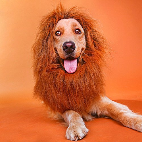 Yosmi Lion Mane Costume drak brown for Dog Adjustable size Clearly synthetic fibers,Perfect fasten around dog head Lion Wig for Dog Retriever Mastiff Halloween lion costume for (Mastiff Halloween Costumes)