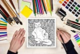 Cat Butt: An Off-Color Adult Coloring Book for Cat
